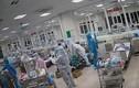11 ca COVID-19 nguy kịch tại Hà Nội được cứu sống