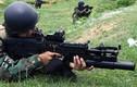 """Báo TQ """"để ý"""" súng mới của Hải quân Đánh bộ Việt Nam"""