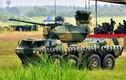 Trung Quốc tiết lộ pháo phòng không tự hành mới
