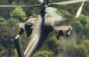 30 AH-64E Đài Loan đánh bại 2 sư đoàn lính thủy TQ?