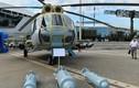 Xem dàn vũ khí mới hút khách châu Á tại Belarus (2)