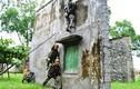 Ảnh QS ấn tượng tuần: chiến sĩ Lữ đoàn 74, Tổng cục II