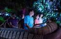 Chết mệt mệt trong thế giới Avata kỳ diệu tại Công viên Pandora
