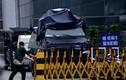 Triển khai xe thiết giáp bảo vệ Tân Sơn Nhất dịp APEC