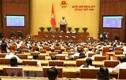 Quốc hội dành cả ngày thảo luận Luật Phòng, chống tham nhũng