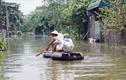 Ngập lụt ở Chương Mỹ: Dừng tất cả cuộc họp để ứng phó mưa lũ