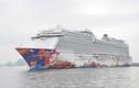Video: Chiêm ngưỡng tàu du lịch siêu sang ghé thăm Hạ Long