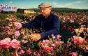 Video: Đến Pháp thăm Grasse - Thủ phủ nước hoa của Thế giới