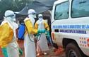 3 nhà báo bị giết vì tuyên truyền chống dịch Ebola