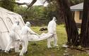 Con số kinh hoàng về đại dịch Ebola
