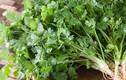 Các loại rau thơm, gia vị ngừa ung thư cực nhạy