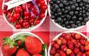 10 món ăn vặt lành mạnh cứ ăn không sợ béo