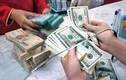 Giá USD lao dốc không phanh, thấp nhất 6 tháng
