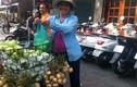 Trái cây giá 7.000 đồng/kg tràn ngập phố Sài thành