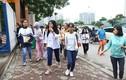 Đề thi, đáp án môn Ngữ văn vào lớp 10 Hà Nội, TPHCM