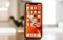 Chi tiết iPhone XR của Apple dính lỗi bất ngờ