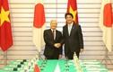 Tổng Bí thư Nguyễn Phú Trọng hội đàm với Thủ tướng Shinzo Abe