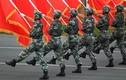 """Le Point: Trung Quốc """"chống lại phần còn lại của thế giới"""""""