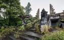 Vẻ đẹp ma mị của khách sạn bị bỏ hoang ở Bali