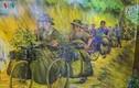 Ảnh: Sức mạnh hậu cần của ta trong Chiến dịch Điện Biên Phủ