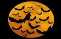 Bốn truyền thuyết muôn đời bí ẩn về Halloween
