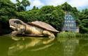 Kinh ngạc nơi trú ngụ bí ẩn của thủy quái Trung Quốc