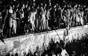 Ảnh độc: Khoảnh khắc khi Bức tường Berlin chính thức sụp đổ