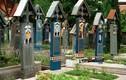 Kỳ lạ bia mộ 'trêu chọc' người chết ở nghĩa trang Romania