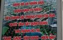Ảnh: Ngỡ ngàng hàng loạt bảng sai chính tả giữa phố Hà Nội