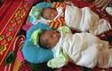 Xót thương 2 bé sinh đôi sinh được 8 ngày thì mẹ qua đời