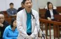 Vụ án Trịnh Xuân Thanh: Tranh luận gay gắt, mời luật sư ra ngoài