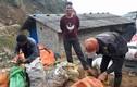"""Đồn là """"rau trường sinh"""", thương lái Trung Quốc đổ xô mua rau dớn"""