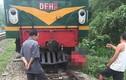 Đi trên đường ray, người phụ nữ bị tàu hỏa kéo lê hàng chục mét