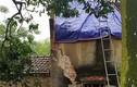 Hà Nội: Người phụ nữ bị sét đánh khi đang ngồi trong nhà