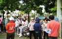 Hàng chục giáo viên hợp đồng Thanh Oai cầu cứu lãnh đạo huyện