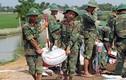 Ngập lụt ở Chương Mỹ: Huy động hàng trăm bộ đội cùng dân hộ đê tả Bùi