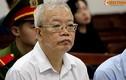 Đề nghị 29 năm tù cho nguyên Chủ tịch HĐQT PVtex
