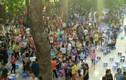 Trường Tiểu học Sơn Đồng bị tố lạm thu: Cơ quan chức năng vào cuộc