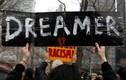 Toà án yêu cầu chính quyền Trump tiếp tục chương trình DACA