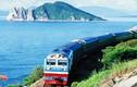 Sẽ mời tư nhân làm dự án đường sắt cao tốc Bắc - Nam
