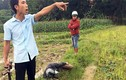 Ảnh: Hai thanh niên trộm chó bị vây bắt đánh giữa đồng