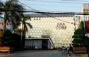 Cà Mau: Phát hiện bất ngờ khi kiểm tra quán bar Gossip Thiên Văn