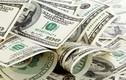 Tỷ giá ngoại tệ ngày 24/10: USD tăng giá do bất ổn ở châu Âu