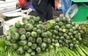 """""""Choáng"""" cây thuốc phiện bán như rau ở chợ vùng biên"""