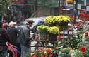 Nhộn nhịp phố hoa Hoàng Hoa Thám ngày cận Tết