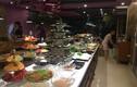 """Khách hàng """"tố"""" nhà hàng OhCha Lạc Long Quân bán buffet hải sản thối"""