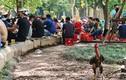 Nhiều người phớt lờ việc đeo khẩu trang, tụ tập bán trà đá rôm rả ở Hà Nội