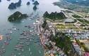Hồ sơ Cty Mai Quyền làm dự án bến cảng Ao Tiên - Vân Đồn hơn 600 tỷ đồng