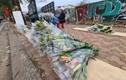 Hoa ly rớt giá thê thảm, bày bán la liệt ở vỉa hè Hà Nội