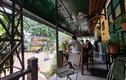 """Hà Nội: Nhiều quán cafe """"phớt lờ"""" chỉ đạo phòng dịch COVID-19, ngang nhiên hoạt động"""